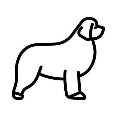 Novofoudlanský pes